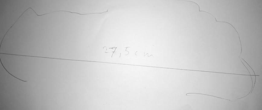 My Foot: 27,5 cm